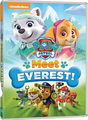 Paw Patrol: Conosciamo Everest! (2013).avi DVDRiP XviD AC3 - iTA